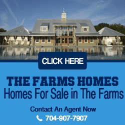 The Farms Homes For Sale